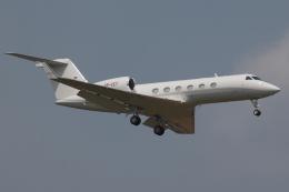 Deepさんが、成田国際空港で撮影したジェット・アビエーション・ビジネス・ジェット G-IV-X Gulfstream G450の航空フォト(飛行機 写真・画像)