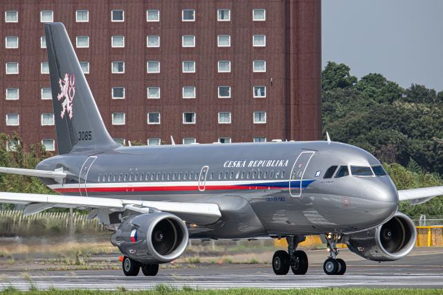 航空フォト:3085 チェコ空軍 A319