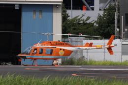 KAZFLYERさんが、東京ヘリポートで撮影した新日本ヘリコプター 206L-3 LongRanger IIIの航空フォト(飛行機 写真・画像)