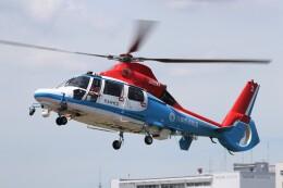 KAZFLYERさんが、東京ヘリポートで撮影した川崎市消防航空隊 AS365N3 Dauphin 2の航空フォト(飛行機 写真・画像)
