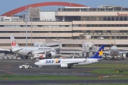 Hiro-hiroさんが、羽田空港で撮影したスカイマーク 737-8FZの航空フォト(飛行機 写真・画像)