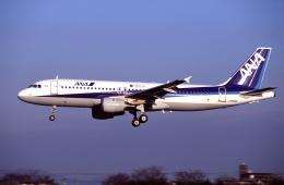 航空フォト:JA8381 全日空 A320