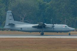 よっしぃさんが、シンガポール・チャンギ国際空港で撮影したシンガポール空軍 50 UTAの航空フォト(飛行機 写真・画像)