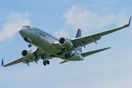 singapore346さんが、フランクフルト国際空港で撮影したタロム航空 737-78Jの航空フォト(飛行機 写真・画像)