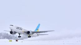 Tetsupechiさんが、旭川空港で撮影したAIR DO 767-33A/ERの航空フォト(飛行機 写真・画像)