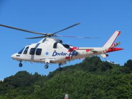 チダ.ニックさんが、静岡ヘリポートで撮影した日本法人所有 AW109SP GrandNewの航空フォト(飛行機 写真・画像)