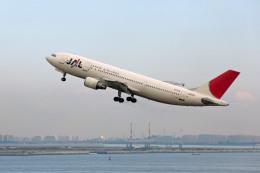 航空フォト:JA011D 日本航空 A300-600