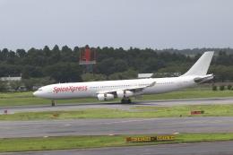 airdrugさんが、成田国際空港で撮影したスパイスジェット A340-313Xの航空フォト(飛行機 写真・画像)