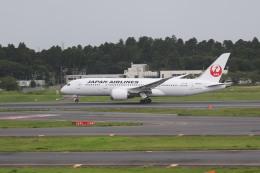 airdrugさんが、成田国際空港で撮影した日本航空 787-8 Dreamlinerの航空フォト(飛行機 写真・画像)