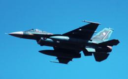 こびとさんさんが、築城基地で撮影した航空自衛隊 F-2Aの航空フォト(飛行機 写真・画像)
