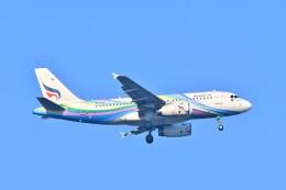 航空フォト:HS-PGX バンコクエアウェイズ A319