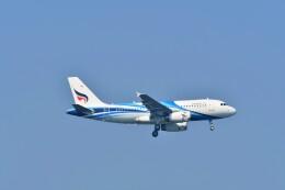 航空フォト:HS-PPU バンコクエアウェイズ A319