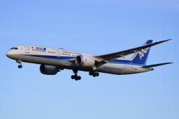 ▲®さんが、成田国際空港で撮影した全日空 787-9の航空フォト(飛行機 写真・画像)