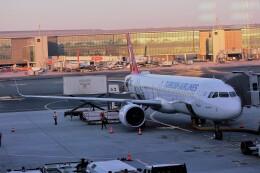 HACIさんが、イスタンブール空港で撮影したターキッシュ・エアラインズ A321-271NXの航空フォト(飛行機 写真・画像)