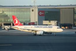 HACIさんが、イスタンブール空港で撮影したターキッシュ・エアラインズ A319-132の航空フォト(飛行機 写真・画像)