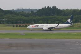 t.anrakuさんが、成田国際空港で撮影した山東航空 737-85Nの航空フォト(飛行機 写真・画像)