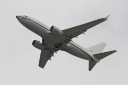 Koenig117さんが、嘉手納飛行場で撮影したアメリカ海軍 C-40A Clipper (737-7AFC)の航空フォト(飛行機 写真・画像)