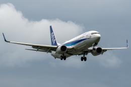 Tak Ouchiさんが、富山空港で撮影した全日空 737-881の航空フォト(飛行機 写真・画像)