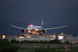 航空フォト:JA811A 全日空 787-8 Dreamliner
