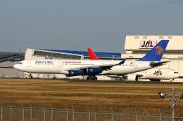 hiroki_h2さんが、成田国際空港で撮影したエジプト航空 A340-212の航空フォト(飛行機 写真・画像)