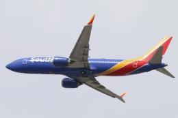 キャスバルさんが、フェニックス・スカイハーバー国際空港で撮影したサウスウェスト航空 737-8-MAXの航空フォト(飛行機 写真・画像)