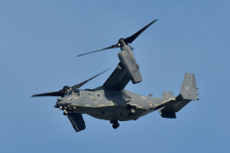 NFファンさんが、厚木飛行場で撮影したアメリカ空軍 CV-22Bの航空フォト(飛行機 写真・画像)