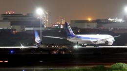 誘喜さんが、羽田空港で撮影したコパ航空 737-8V3の航空フォト(飛行機 写真・画像)