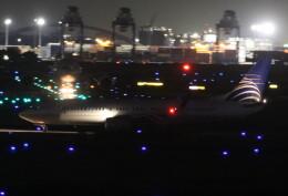 VIPERさんが、羽田空港で撮影したコパ航空 737-8V3の航空フォト(飛行機 写真・画像)