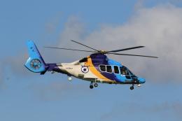 flyskyさんが、成田国際空港で撮影した東邦航空 EC155Bの航空フォト(飛行機 写真・画像)
