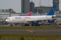 senyoさんが、成田国際空港で撮影したエジプト航空 A340-212の航空フォト(飛行機 写真・画像)