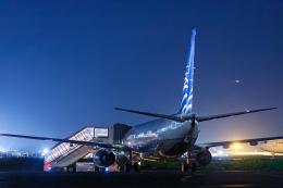 SGR RT 改さんが、羽田空港で撮影したコパ航空 737-8V3の航空フォト(飛行機 写真・画像)