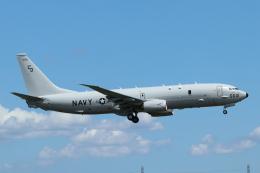 mogusaenさんが、横田基地で撮影したアメリカ海軍 P-8A (737-8FV)の航空フォト(飛行機 写真・画像)