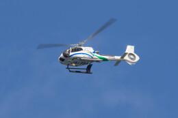 Koenig117さんが、嘉手納飛行場で撮影したいであ EC130T2 (H130)の航空フォト(飛行機 写真・画像)