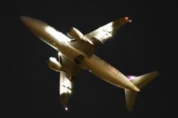 木人さんが、成田国際空港で撮影したYTOカーゴ・エアラインズ 737-36Q(SF)の航空フォト(飛行機 写真・画像)