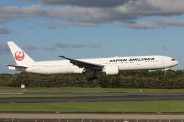 sky-spotterさんが、成田国際空港で撮影した日本航空 777-346/ERの航空フォト(飛行機 写真・画像)