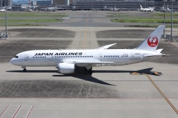 sky-spotterさんが、羽田空港で撮影した日本航空 787-8 Dreamlinerの航空フォト(飛行機 写真・画像)