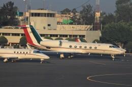 フッ軽の極美さんが、メキシコ・シティ国際空港で撮影したメキシコ空軍 G-IV-X Gulfstream G450の航空フォト(飛行機 写真・画像)