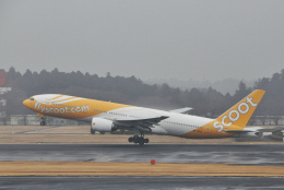 チャーリーマイクさんが、成田国際空港で撮影したスクート (〜2017) 777-212/ERの航空フォト(飛行機 写真・画像)