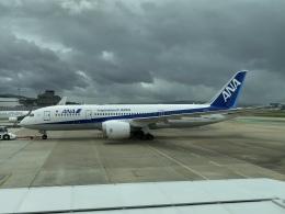 ユターさんが、福岡空港で撮影した全日空 787-8 Dreamlinerの航空フォト(飛行機 写真・画像)