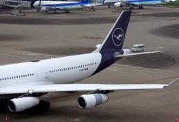 KAZKAZさんが、羽田空港で撮影したルフトハンザドイツ航空 A340-313Xの航空フォト(飛行機 写真・画像)
