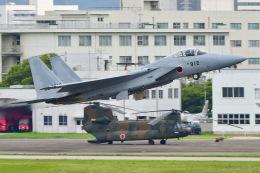 ROSENTHALさんが、名古屋飛行場で撮影した航空自衛隊 F-15J Eagleの航空フォト(飛行機 写真・画像)