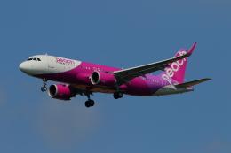 かみじょー。さんが、成田国際空港で撮影したピーチ A320-251Nの航空フォト(飛行機 写真・画像)