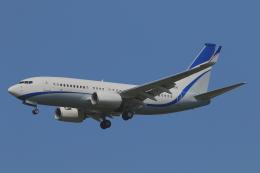 かみじょー。さんが、成田国際空港で撮影した現代自動車 737-7GE(BBJ)の航空フォト(飛行機 写真・画像)