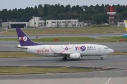 TUILANYAKSUさんが、成田国際空港で撮影したYTOカーゴ・エアラインズ 737-36Q(SF)の航空フォト(飛行機 写真・画像)