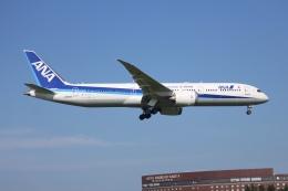 Love NRTさんが、成田国際空港で撮影した全日空 787-9の航空フォト(飛行機 写真・画像)
