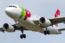 chrisshoさんが、シュトゥットガルト空港で撮影したTAPポルトガル航空 A319-111の航空フォト(飛行機 写真・画像)