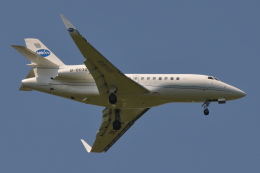 Deepさんが、成田国際空港で撮影したMINTH グループ Falcon 900LXの航空フォト(飛行機 写真・画像)