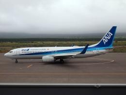 FT51ANさんが、利尻空港で撮影した全日空 737-881の航空フォト(飛行機 写真・画像)
