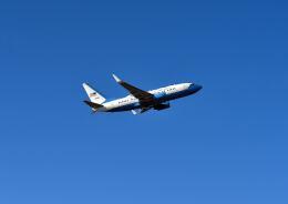 パール大山さんが、横田基地で撮影したアメリカ空軍 C-40B BBJ (737-7CP)の航空フォト(飛行機 写真・画像)