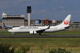 航空フォト:JA326J 日本航空 737-800
